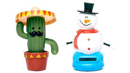 Bild zeigt Kaktus und Schneemann.